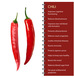 red hot chili pepper pod realistic image vector image