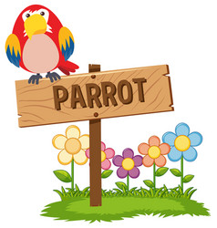 red parrot on wooden sign vector image