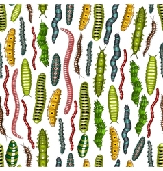 Worm and caterpillar insects seamless pattern vector image