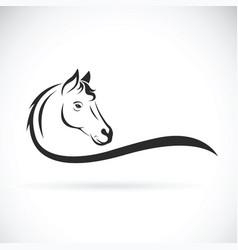 horse head on white background wild animal vector image