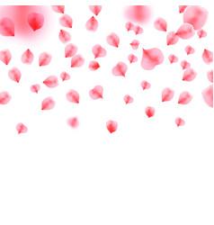 background with rose petals vector image