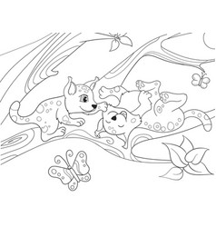 childrens coloring book cartoon family of leopards vector image vector image