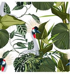 exotic birds monstera palm leaves pattern vector image