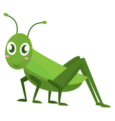 Isolated happy cricket cartoon vector