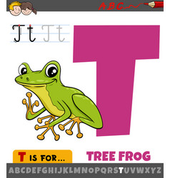 Letter t from alphabet with cartoon tree frog vector