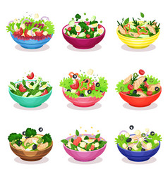 Various salads set vegetable fish and meat salad vector