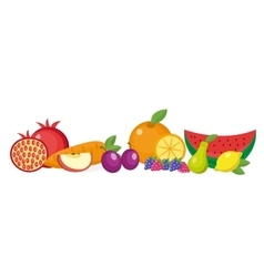 Fruits still life set isolated on white vector image vector image