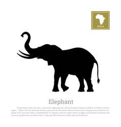 black silhouette of elephant on white background vector image vector image
