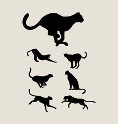 Cheetah Silhouette Collection vector