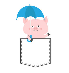 pig face head in pocket umbrella cute cartoon vector image