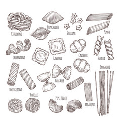 sketch pasta hand drawn italian menu authentic vector image