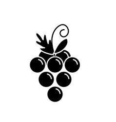contour delicious and healthy grape fruit vector image