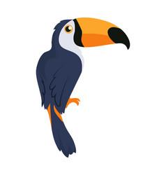 toucan bird cartoon icon in flat design vector image