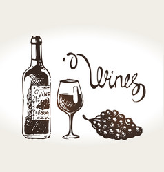 Hand drawn wine bottle glass and grapes vector