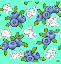 seamless pattern berry blueberry with leaves vector image
