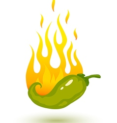 Green chili fire shadow vector