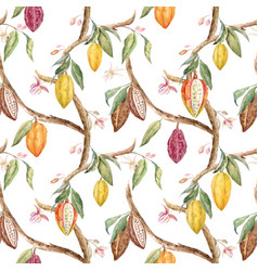 watercolor cocoa pattern vector image vector image