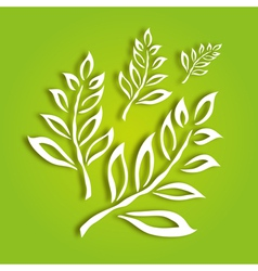 decorative leaves vector image vector image