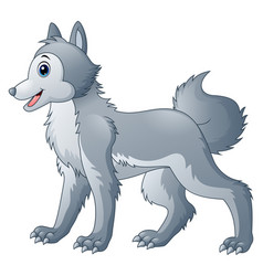 cute wolf cartoon vector image