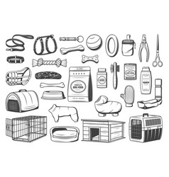 Dog animal care supply pet shop isolated icons vector