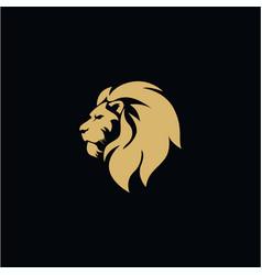 gold lion head black background flat design vector image