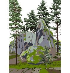Group coniferous trees among rocks covered vector