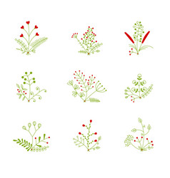 Set nine bouquets vector