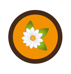 Sweet flower isolated icon vector
