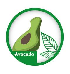 avocado fresh healthy label vector image