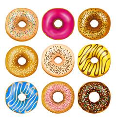 realistic donuts set vector image