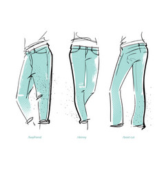 women jeans fits vector image