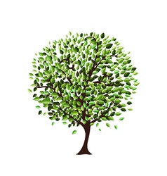 nature tree vector image