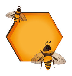 Bee natural product icon vector