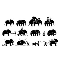 human and elephant pictograms icons depict vector image