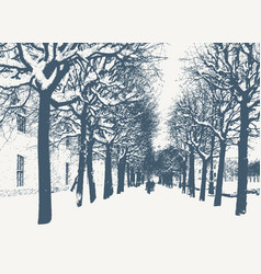 Maple trees in winter city vector