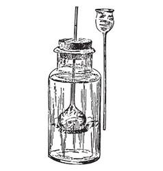 Osmosis apparatus vintage vector