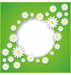 Abstract background with flower camomile vector image