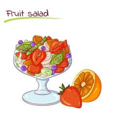fresh fruit salad vector image vector image