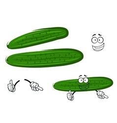 Cartoon crunchy green cucumber vegetable vector