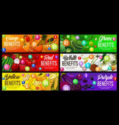 Color diet benefit healthy nutrition rainbow food vector