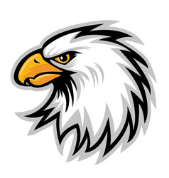 hawk eagle head usa logo mascot 01 vector image
