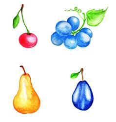 Set of watercolor fruits vector