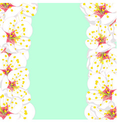 white plum blossom flower border on green mint vector image