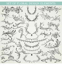 Collection of floral design elements vector image