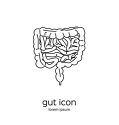 gut human digestive system vector image vector image