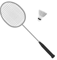 Badminton racket and shuttlecock vector image