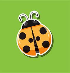 a ladybug sticker template vector image