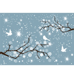 Snow branches vector