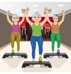 three senior women doing aerobic exercises at gym vector image