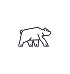 wild bear line icon sign on vector image
